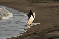 浜辺のサーファー