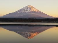 精進湖の逆さ富士