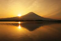 田貫湖から見た日の出と富士山