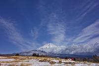 新雪の積もった富士山と草原