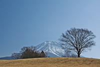 冬の富士山と高原