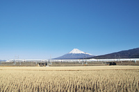 富士山と新幹線