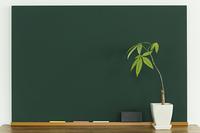 黒板と観葉植物