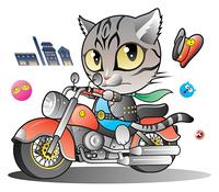 猫ライダー