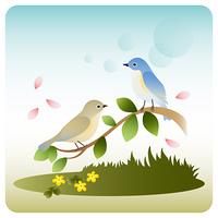 二羽のルリビタキ/野原/木の枝