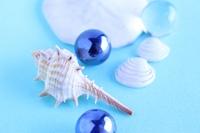 貝とビー玉 海と夏のイメージ