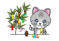 七夕飾りをする猫