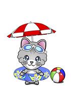 ビーチの猫