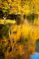 紅葉とオンネトーの湖面