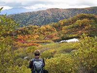 紅葉の大雪山高原沼めぐりコースと登山者