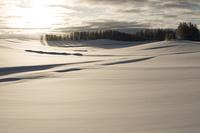 冬の美瑛町の朝日