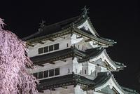 弘前城の天守閣と夜桜