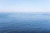 函館市の青い海