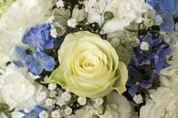 薔薇とカーネーションの花束