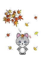 秋を感じた猫