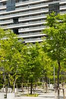 新緑の高層マンション街