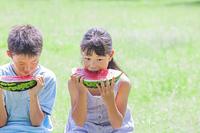 スイカを食べる小学生