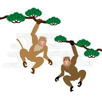 松の木にぶら下がる二匹のサルのPNG素材