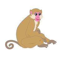 フェミニンな若い雌猿のPNG素材