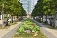 横浜・みなとみらい グランモール公園