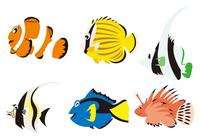 熱帯魚6種