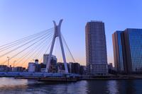 東京 夕暮れ時の中央大橋と高層マンション群