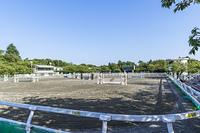 馬事公苑のメインアリーナ