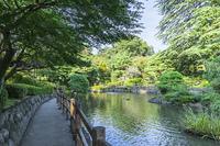 馬事公苑の日本庭園