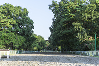 馬事公苑の走路