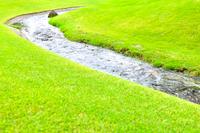 川の流れと新緑