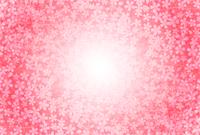桜 ピンク 背景