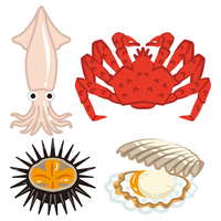 魚介類 四種類セット