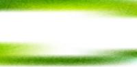 新緑 和紙 背景