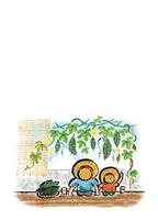 【はがき】和風イラスト・夏・ゴーヤー