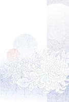 喪中はがき・菊・紫