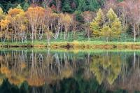 秋映の木戸池