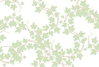 アイビーの蔦の葉の壁紙