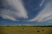 夏空と牧草ロール