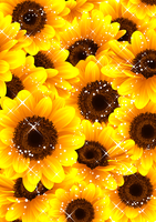 向日葵の綺麗な夏らしい背景