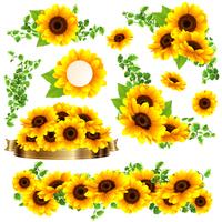 向日葵の綺麗な夏らしいフレーム