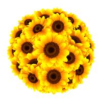 向日葵の綺麗なワンポイントイラスト