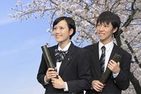 卒業 桜の下の高校生