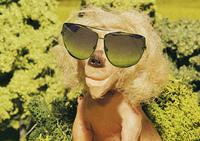 Leo: lion with sunglasses