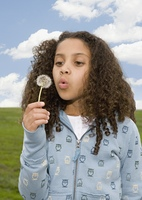 Mixed Race girl blowing on dandelion