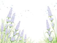 感性の花の背景