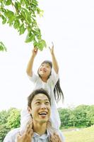 父親に肩車をされて木の葉をつかむ女の子