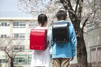 桜の下に立つ小学生男女の後ろ姿