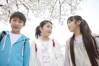 桜の下に立つ小学生男女