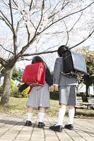 桜を見上げる小学生男女