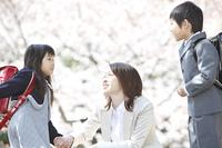 桜並木の下で会話する小学生男女と母親